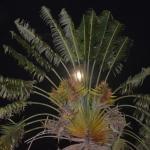 Di notte fuori dal convento del Kituo